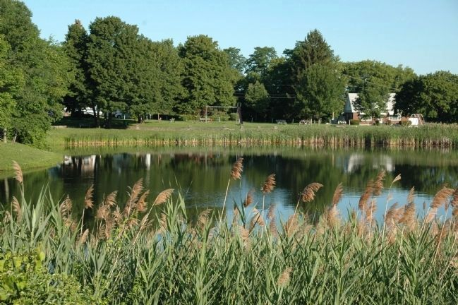 Steinmetz Park in Schenectady image. Click for full size.