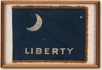 The Moultrie Flag image. Click for full size.