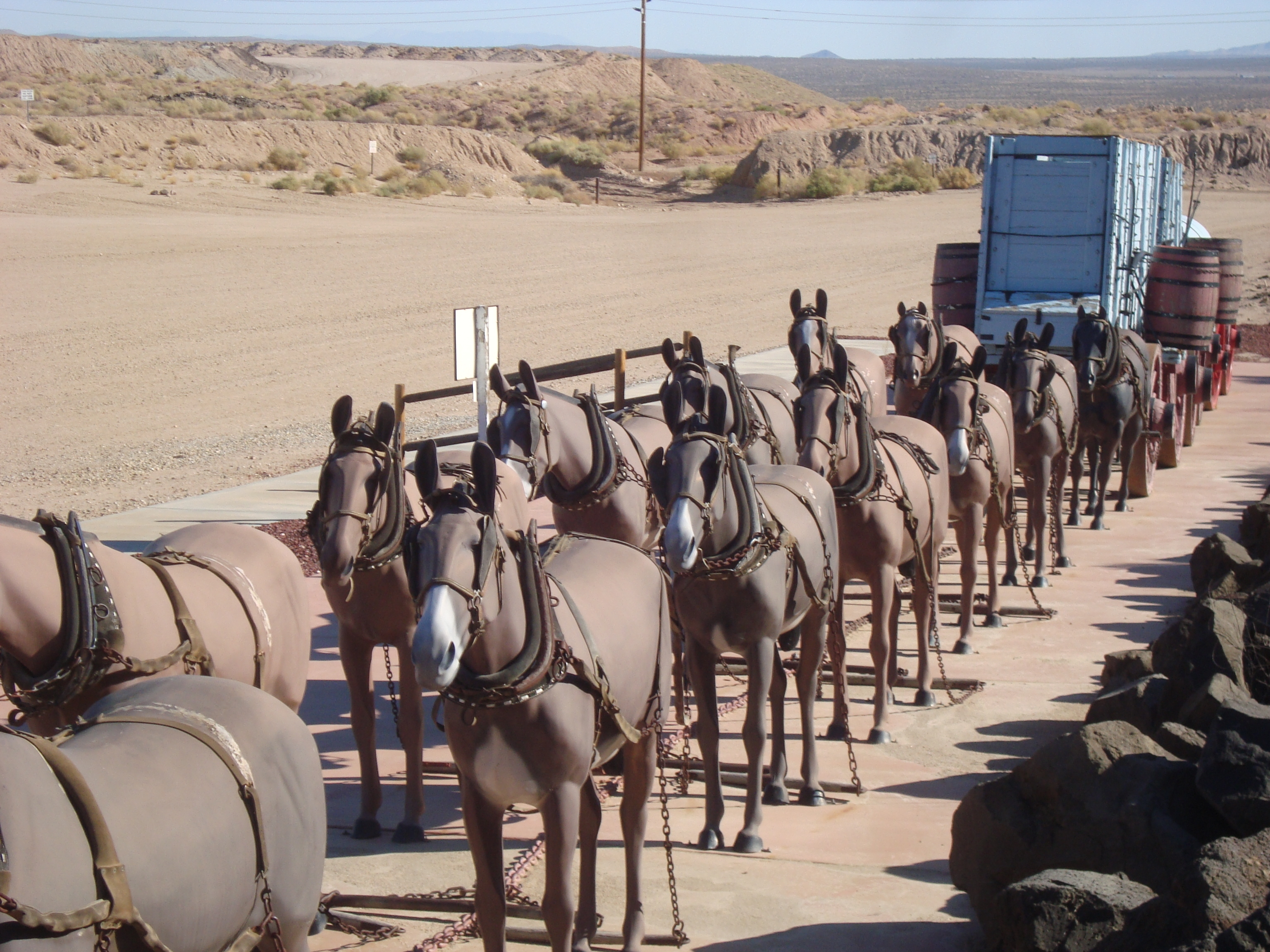 The Twenty Mule Team