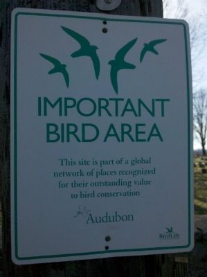 Important Bird Area image. Click for full size.