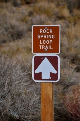 Rock Spring Loop Trail image. Click for full size.