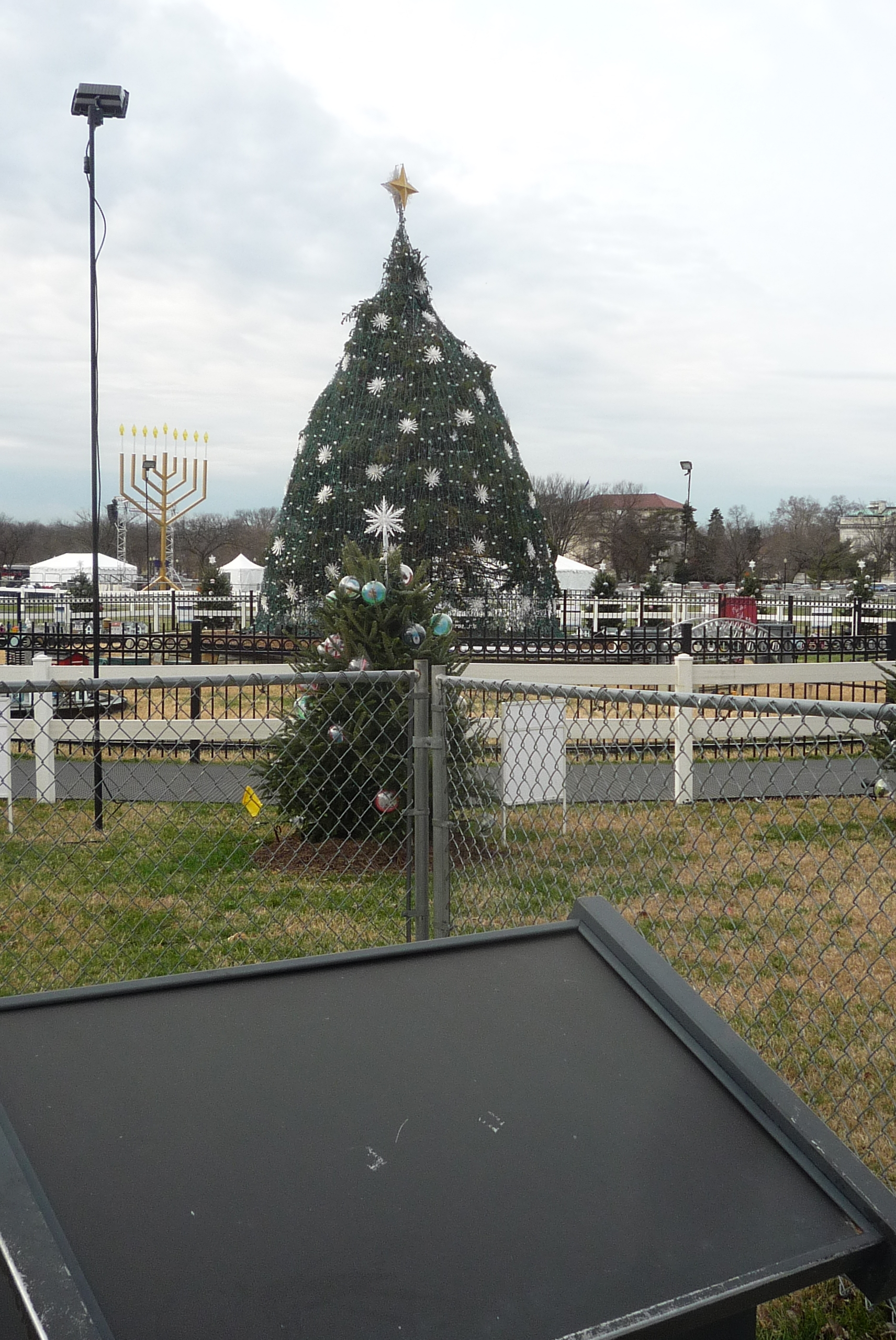 The National Christmas Tree Marker