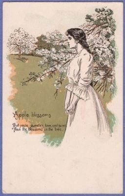 Evangeline - Apple Blossoms Postcard image. Click for full size.