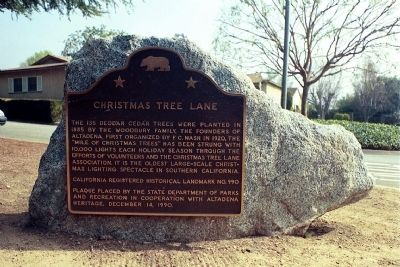 Christmas Tree Lane Marker image. Click for full size.
