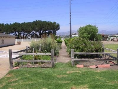 Olivas Herb Garden image. Click for full size.