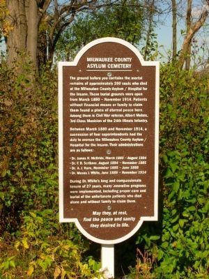 Milwaukee County Asylum Cemetery Marker image. Click for full size.