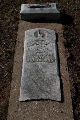 Annie Martin<br>Wife of David Watkins<br>Born Nov. 16, 1829<br>Apr. 19, 1895 image. Click for full size.