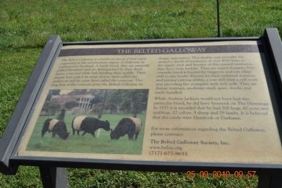 The Belted Galloway Marker image. Click for full size.