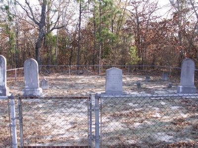 Area view of the thirteen moved graves image. Click for full size.