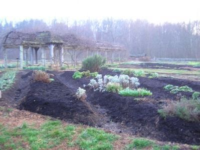 Community Garden (in Winter) image. Click for full size.