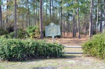 Vereen Bell Highway Marker image. Click for full size.