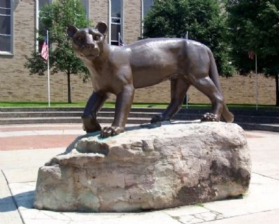 Altoona Area High School Mountain Lion image. Click for full size.