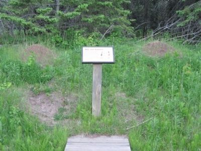 Ant Mound Sign in Park image. Click for full size.