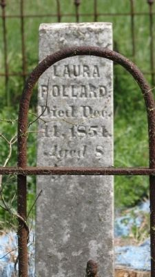 Pollard-Tulloss Cemetery image. Click for full size.