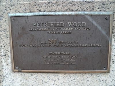 Petrified Wood Marker image. Click for full size.