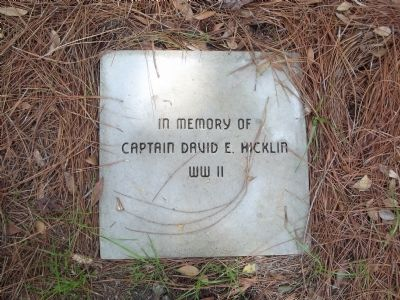 In memory of Captain David E. Hicklin WWII image. Click for full size.