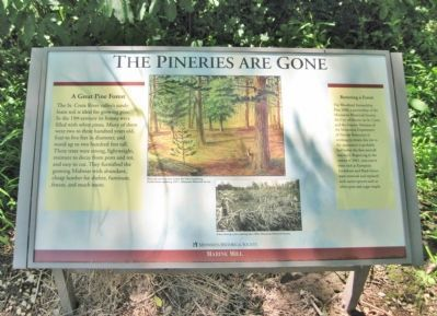 The Pineries are Gone Marker image. Click for full size.