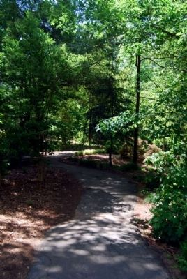 Hatcher Garden & Woodland Preserve Winding Path image. Click for full size.