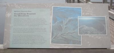 Giant Kelp Beyond the Breakers Marker image. Click for full size.