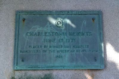 Daughters of the American Revolution Marker image. Click for full size.