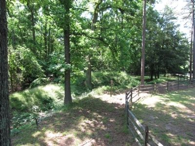 Preserved Earthworks at Chickahominy Bluff image. Click for full size.