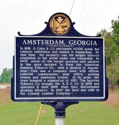 Side 1: Amsterdam, Georgia Marker image. Click for full size.