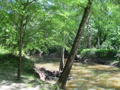 The Hatchie River image. Click for full size.