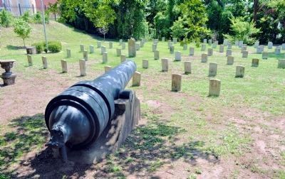 Confederate Graves in Linwood Cemetery image. Click for full size.