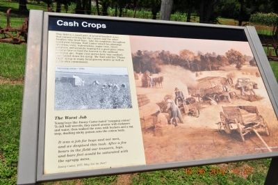 Cash Crops Marker image. Click for full size.