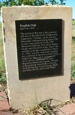 English Oak Marker image. Click for full size.