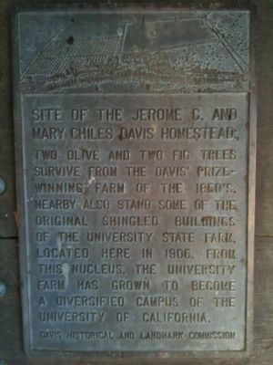 Site of the Jerome C. and Mary Chiles Davis Homestead Marker image. Click for full size.