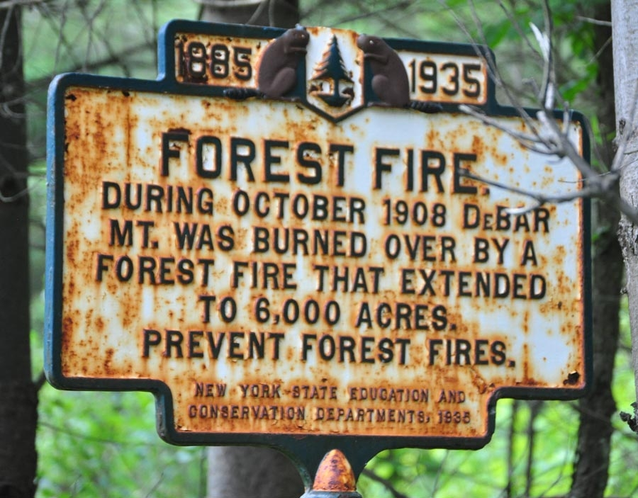 Forest Fire Marker