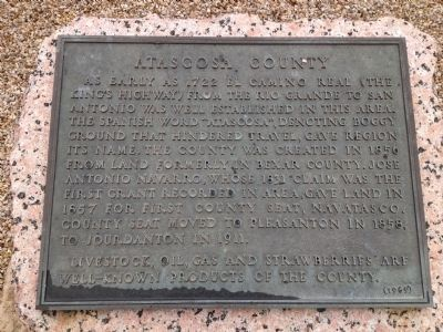 Atascosa County Marker image. Click for full size.