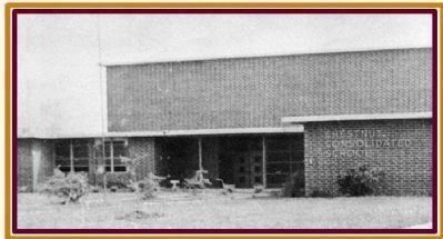 Chestnut Consolidated School - Front of original building image. Click for full size.