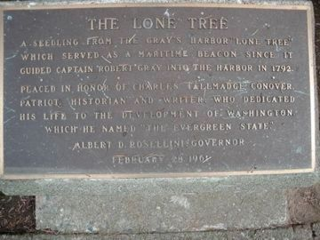 The Lone Tree Marker image. Click for full size.
