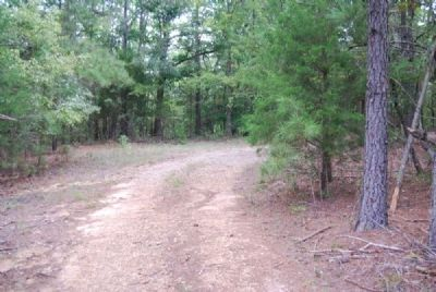 Dirt Road Leading to Bartlett Tucker Family Cemetery image. Click for full size.