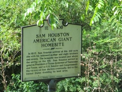 Sam Houston American Giant Homesite Marker image. Click for full size.