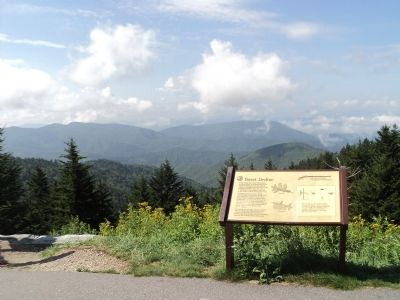 Marker on the Blue Ridge Parkway image. Click for full size.