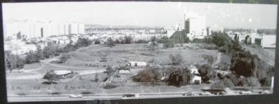 Hancock Park 1953 image. Click for full size.