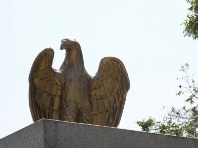 Eagle on top of the Marker image. Click for full size.