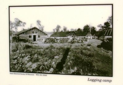 Lower Left Photo: Logging Camp image. Click for full size.