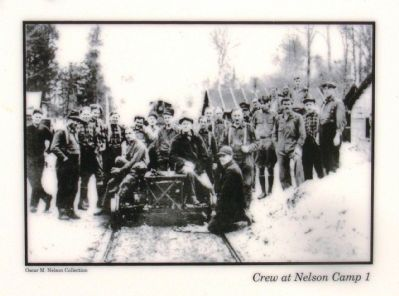 Top photo: Crew at Nelson Camp 1 image. Click for full size.