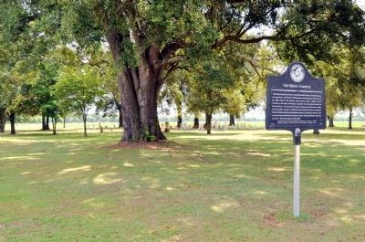 Old Shiloh Cemetery and Marker image. Click for full size.