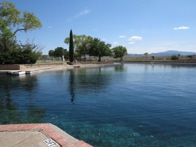 View of springs with foothills of Davis Mountains in distance image. Click for full size.