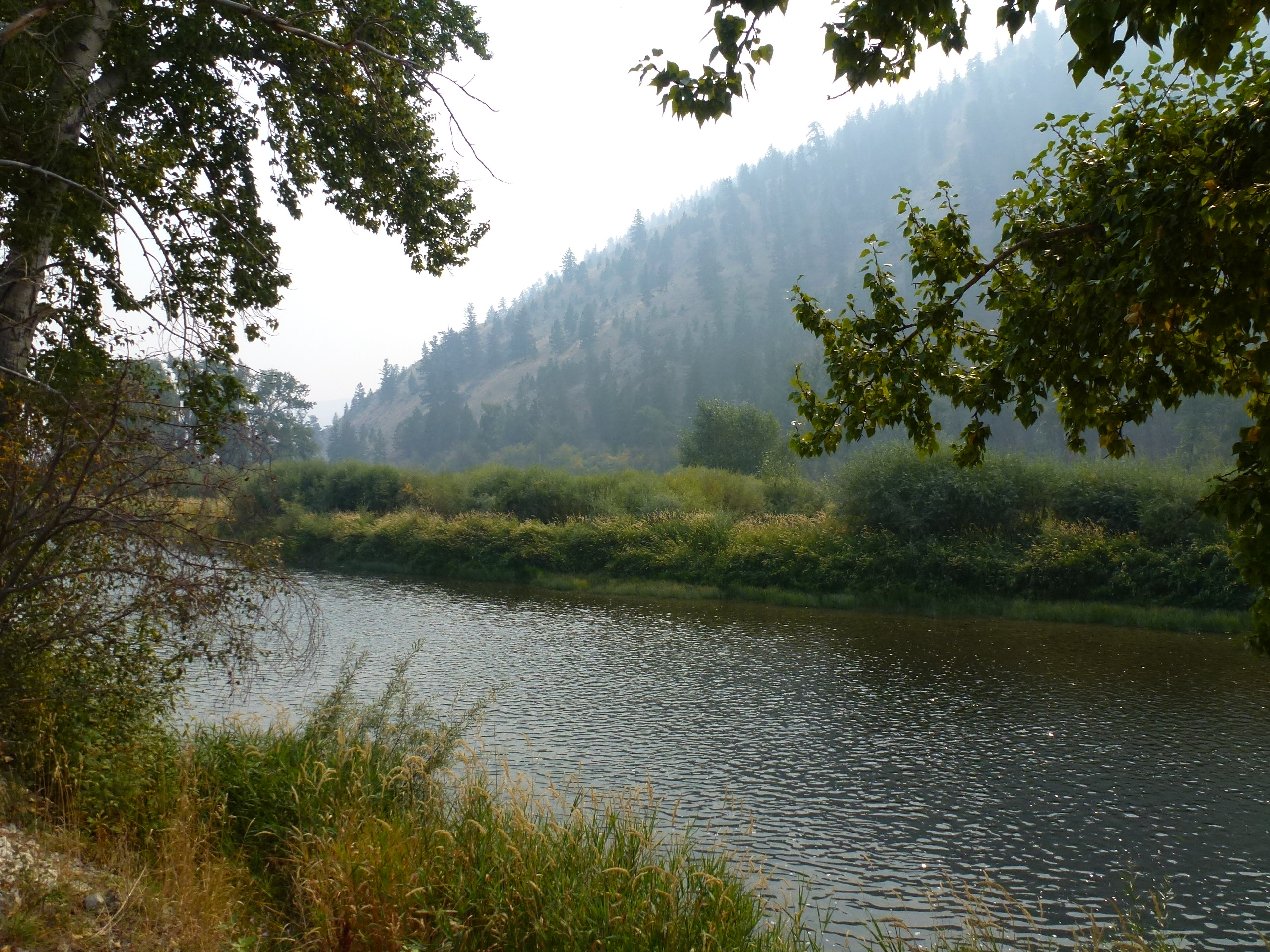 View South of Lewis and Clark Marker, the Salmon River
