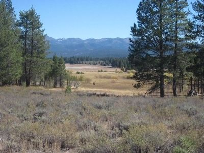 Alder Creek Valley Meadow image. Click for full size.