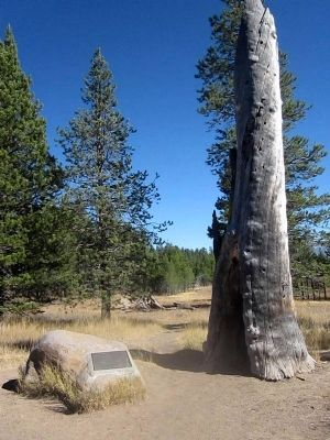Donner Camp Site and Marker image. Click for full size.