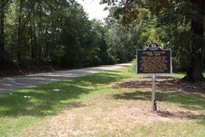 George Stiggins Marker, along Old Federal Road (County Road 8) looking west image. Click for full size.