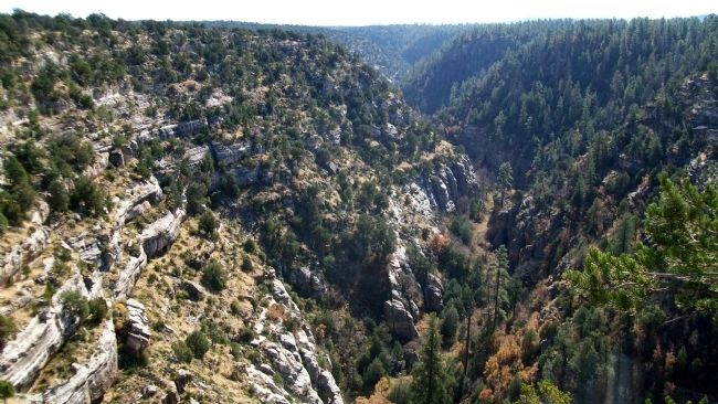 Walnut Canyon National Monument image. Click for full size.