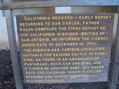 California Redwood - Early Report image. Click for full size.